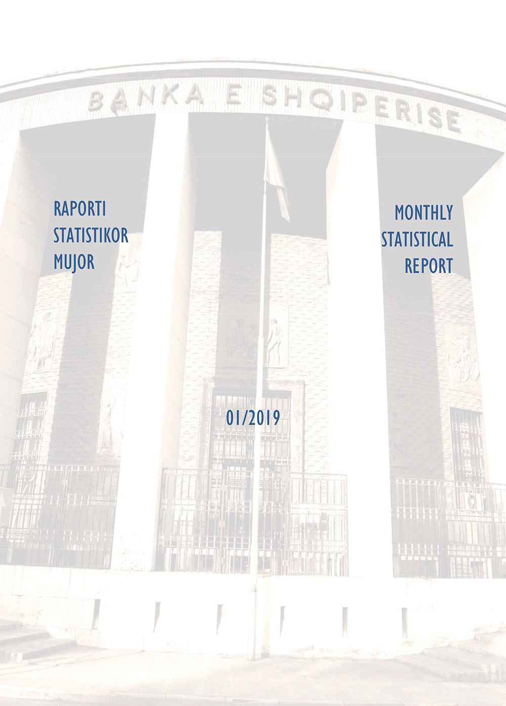 Raporti Statistikor - janar '19